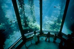 ARCHITECT'S Review of the Vision & Technology Supporting the Beloved Monterey Bay Aquarium